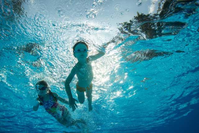 色々な泳ぎ方・動き
