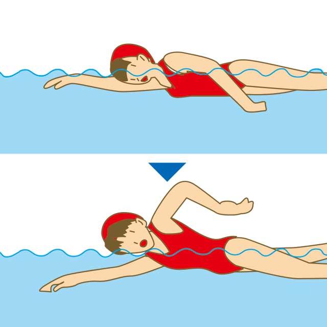 図解:息継ぎの方法