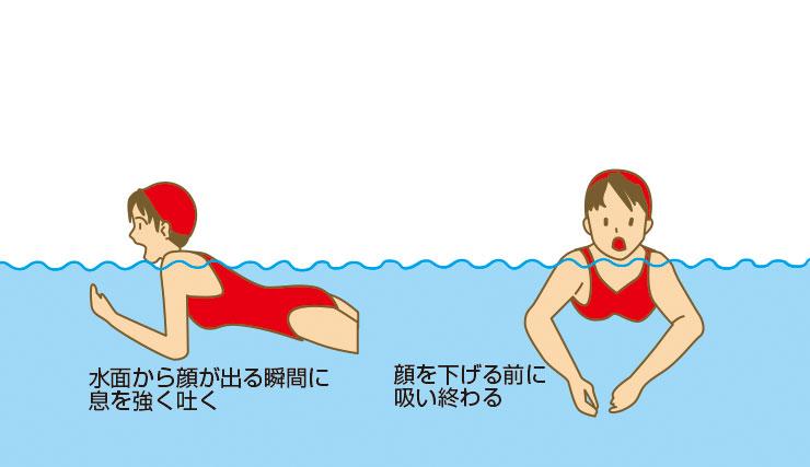 平泳ぎの息継ぎ