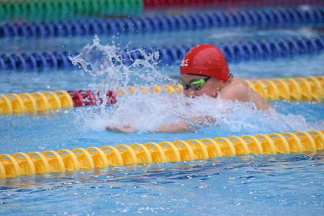 平泳ぎをする水泳選手
