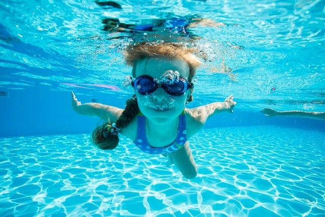 水泳をしているサンディ