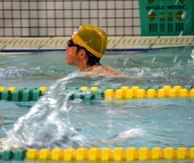 水泳の等級テストを受けた息子~ホーリージャック